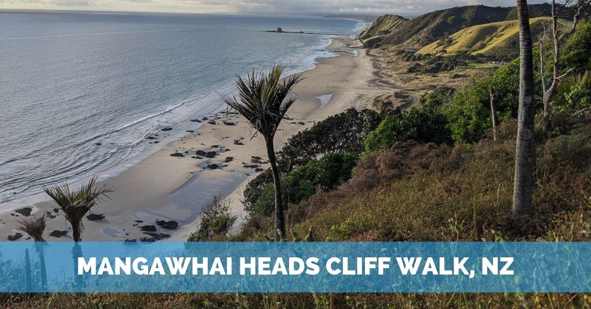 Mangawhai Heads Cliff Walk – A Favorite NZ Hike