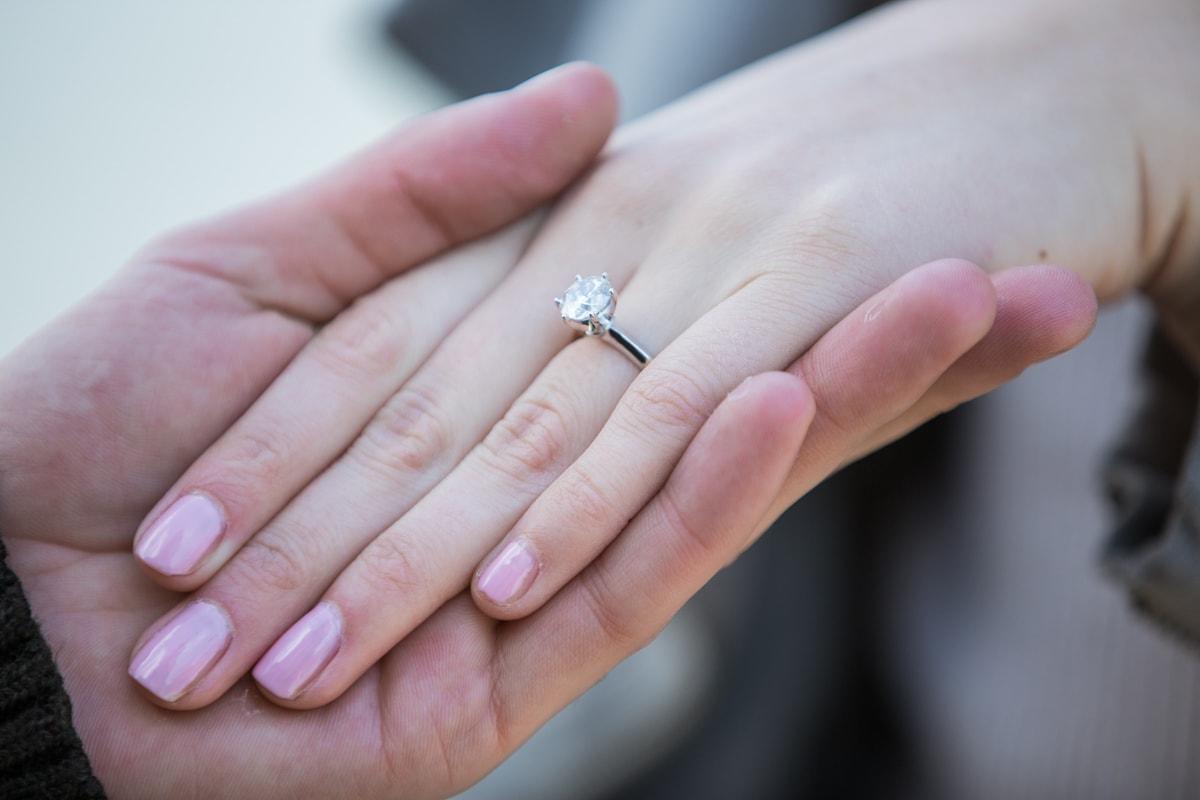 Photo 15 Marriage proposal at Brooklyn Bridge Park   VladLeto