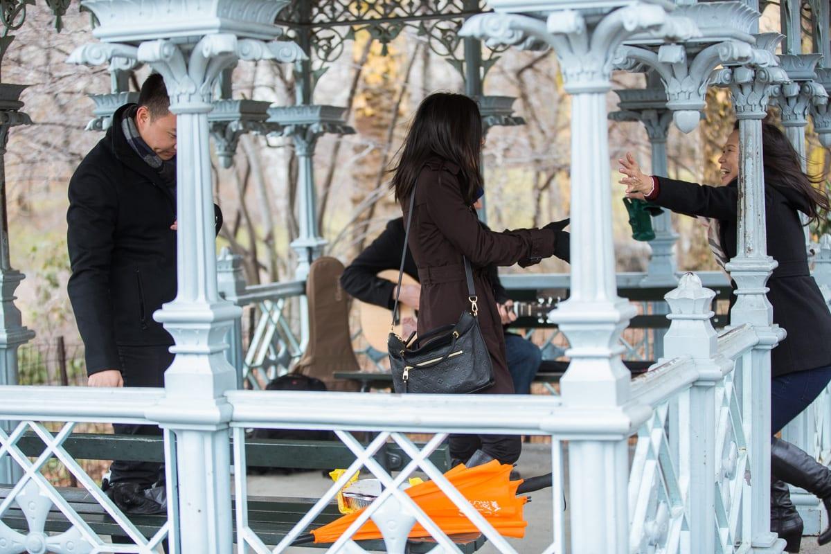 Photo 3 Surprise Proposal at Ladies Pavilion in Central Park | VladLeto