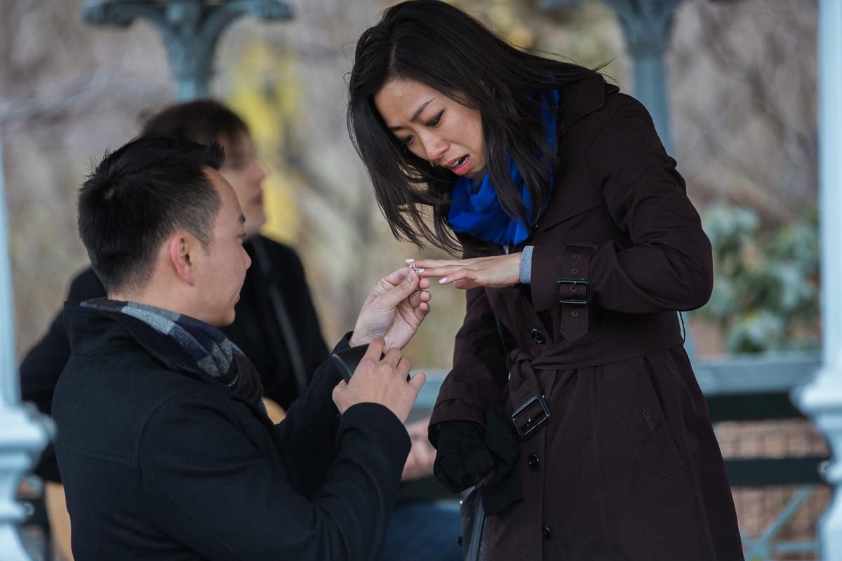 Photo 5 Surprise Proposal at Ladies Pavilion in Central Park | VladLeto