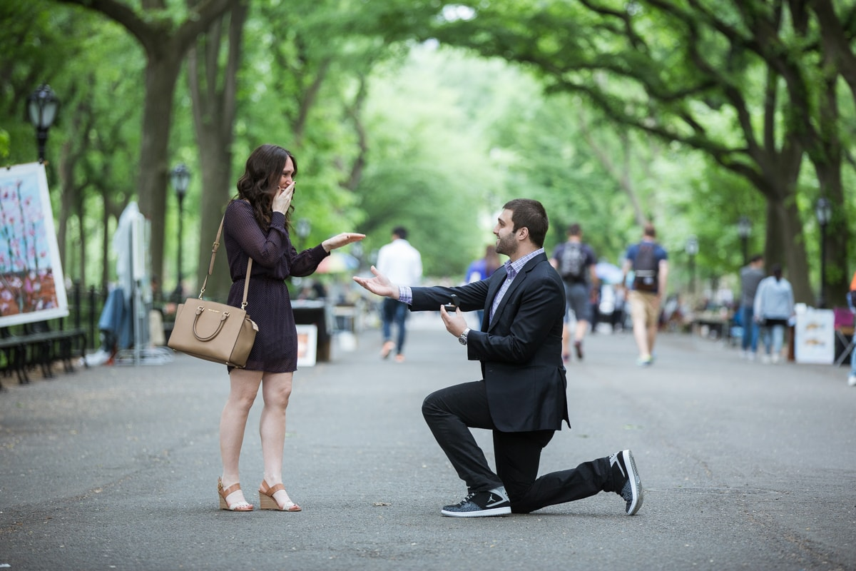Photo 2 Secret marriage proposal in The Mall, Central Park | VladLeto