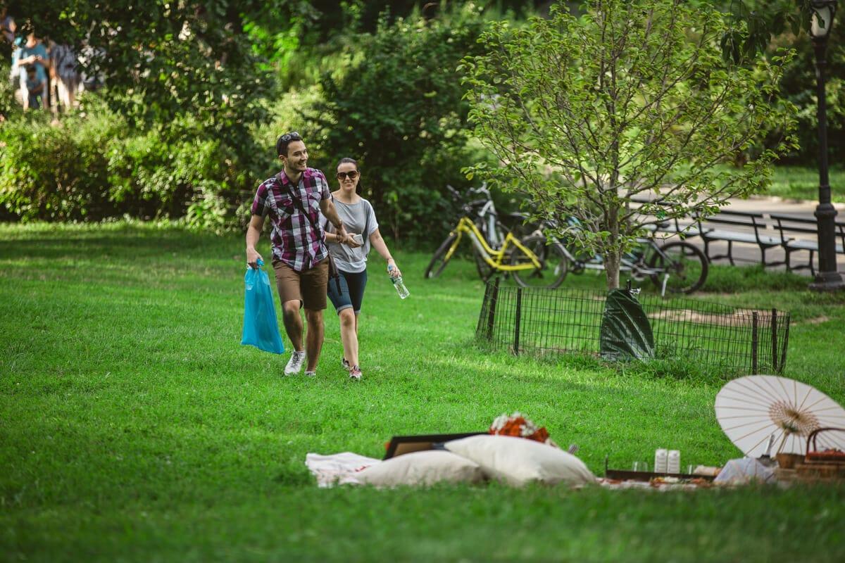 Photo Picnic Proposal in Central Park | VladLeto