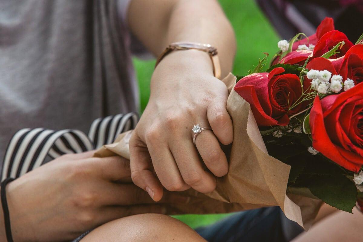Photo 10 Central Park Picnic Proposal