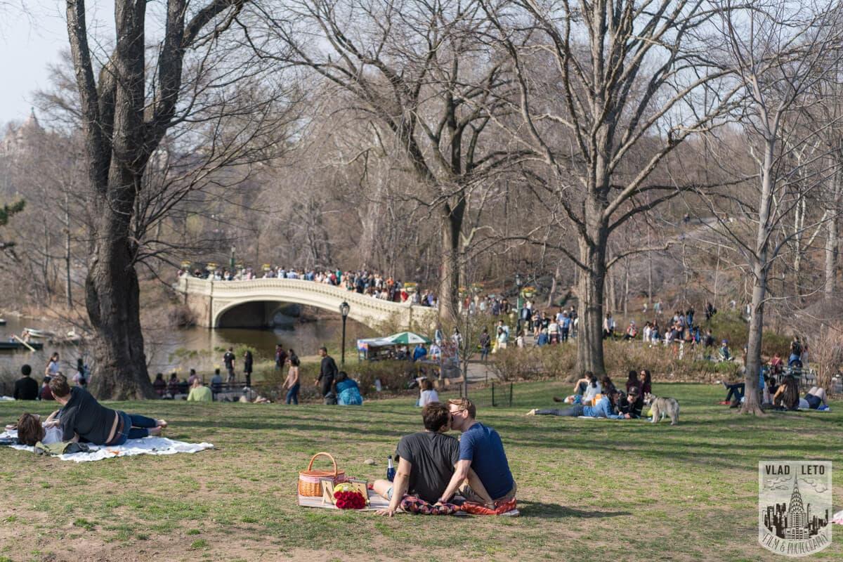 Photo Central Park Romantic Picnic Proposal | VladLeto