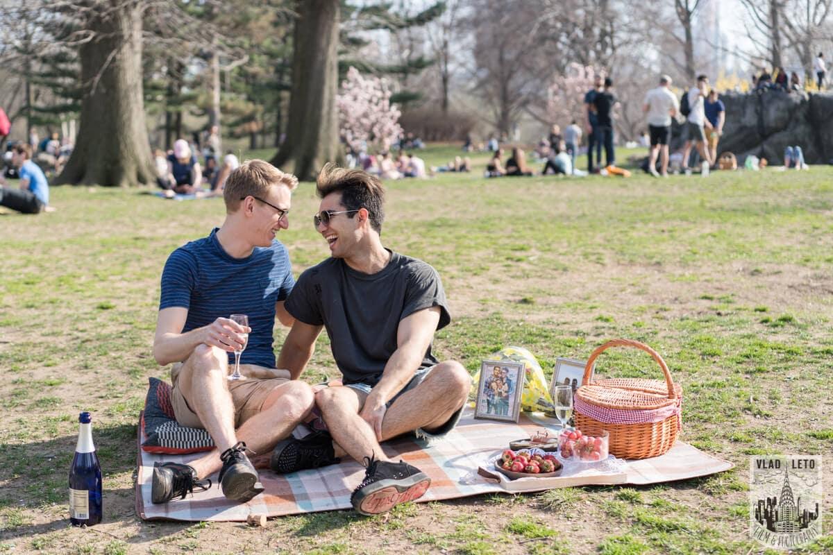 Photo 2 Central Park Romantic Picnic Proposal | VladLeto