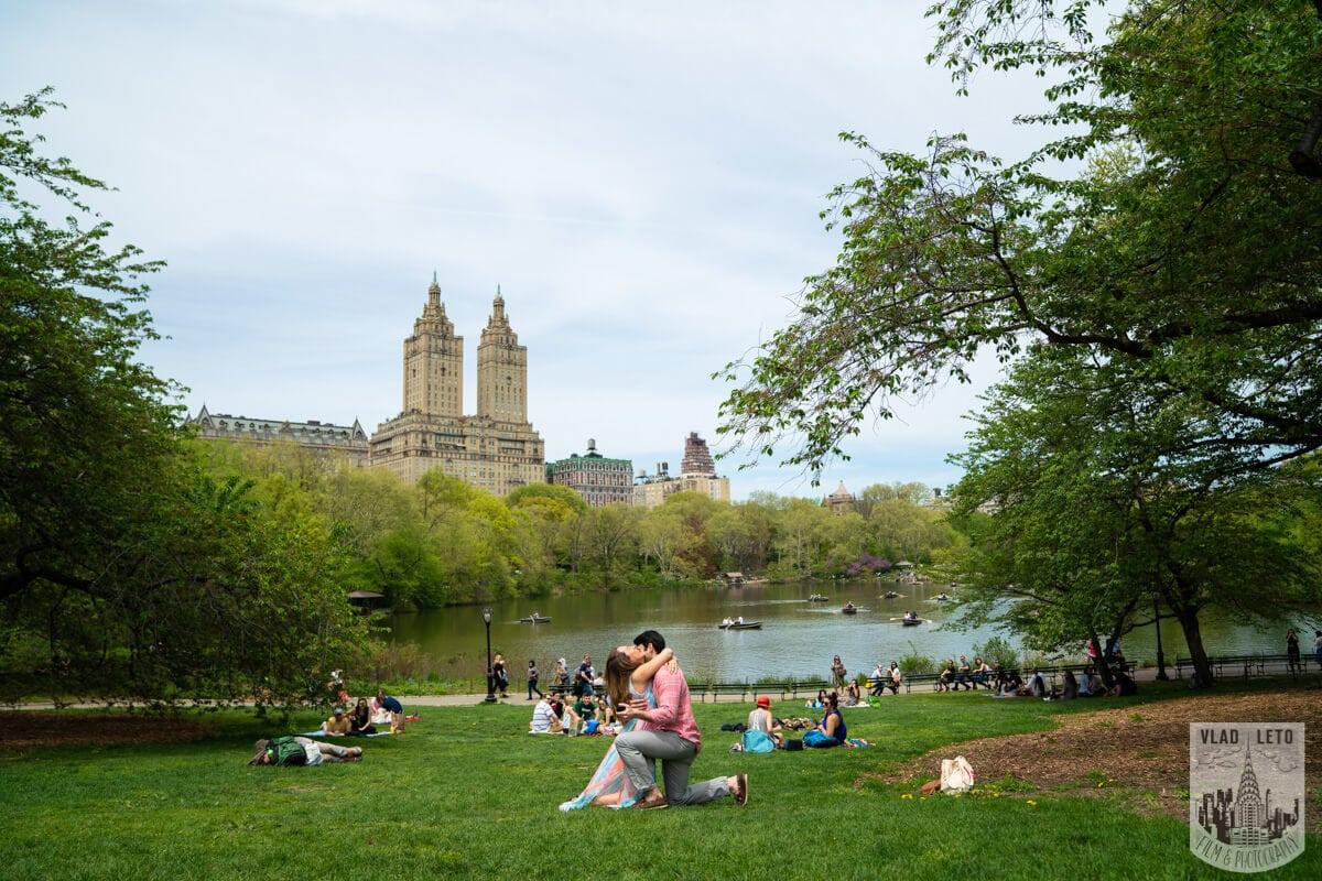 Photo 2 Central Park Proposal   VladLeto