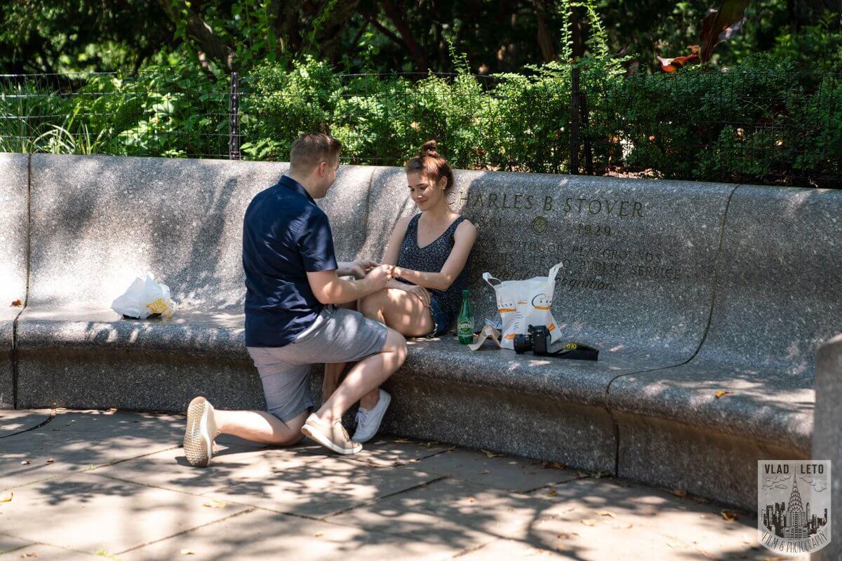 Photo 2 Shakespeare Garden Proposal in Central Park 2   VladLeto