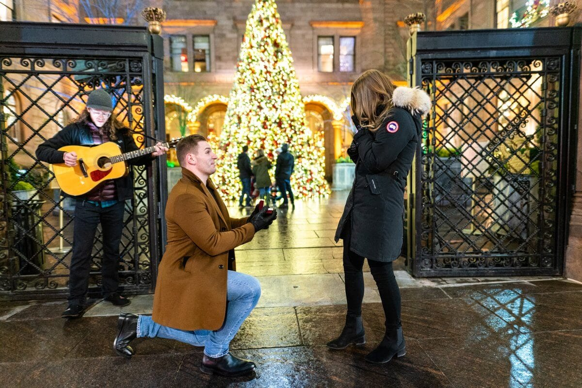 Photo Lotte Palace Christmas Tree Proposal | VladLeto