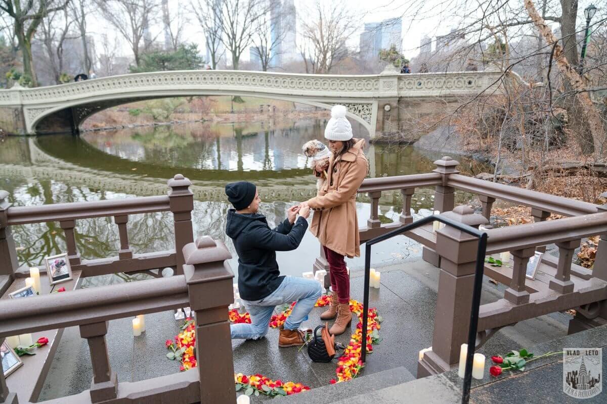 Photo 3 Central Park Marriage Proposal by Bow Bridge.   VladLeto