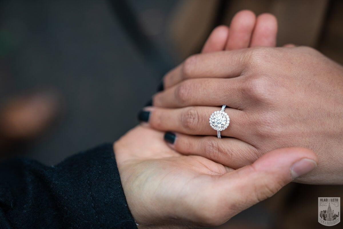 Photo 6 Central Park Marriage Proposal by Bow Bridge.   VladLeto