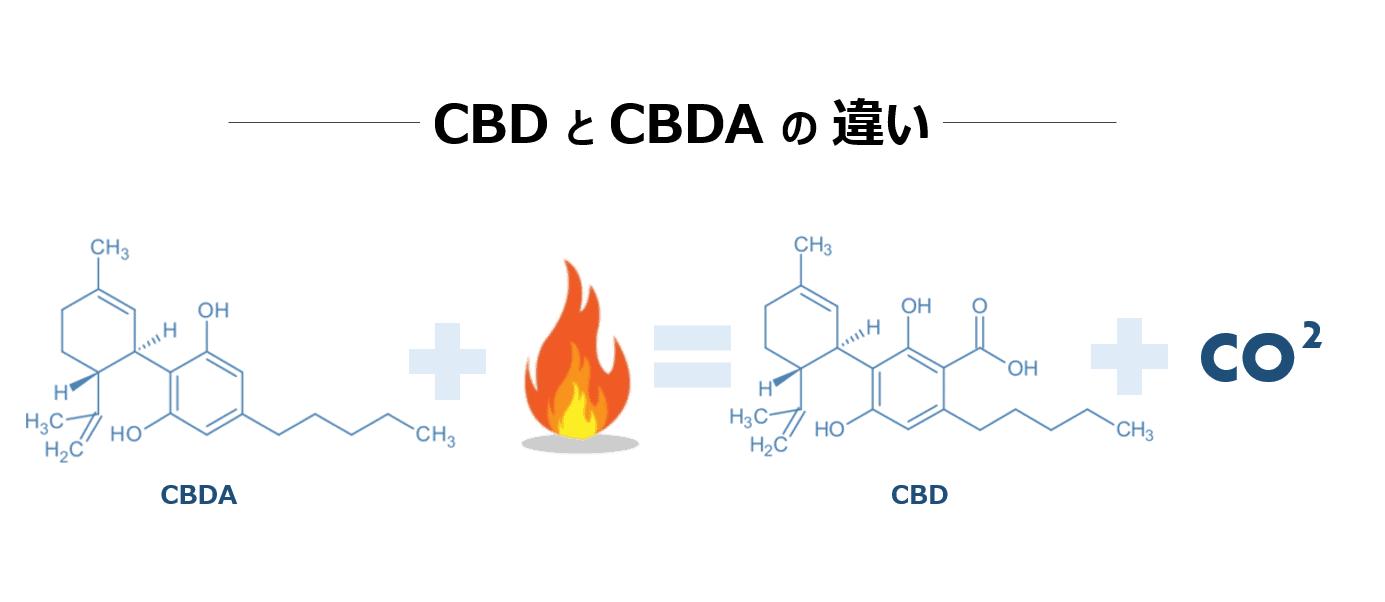 CBDとCBDAの違いとは?ヘンプ博士の解説