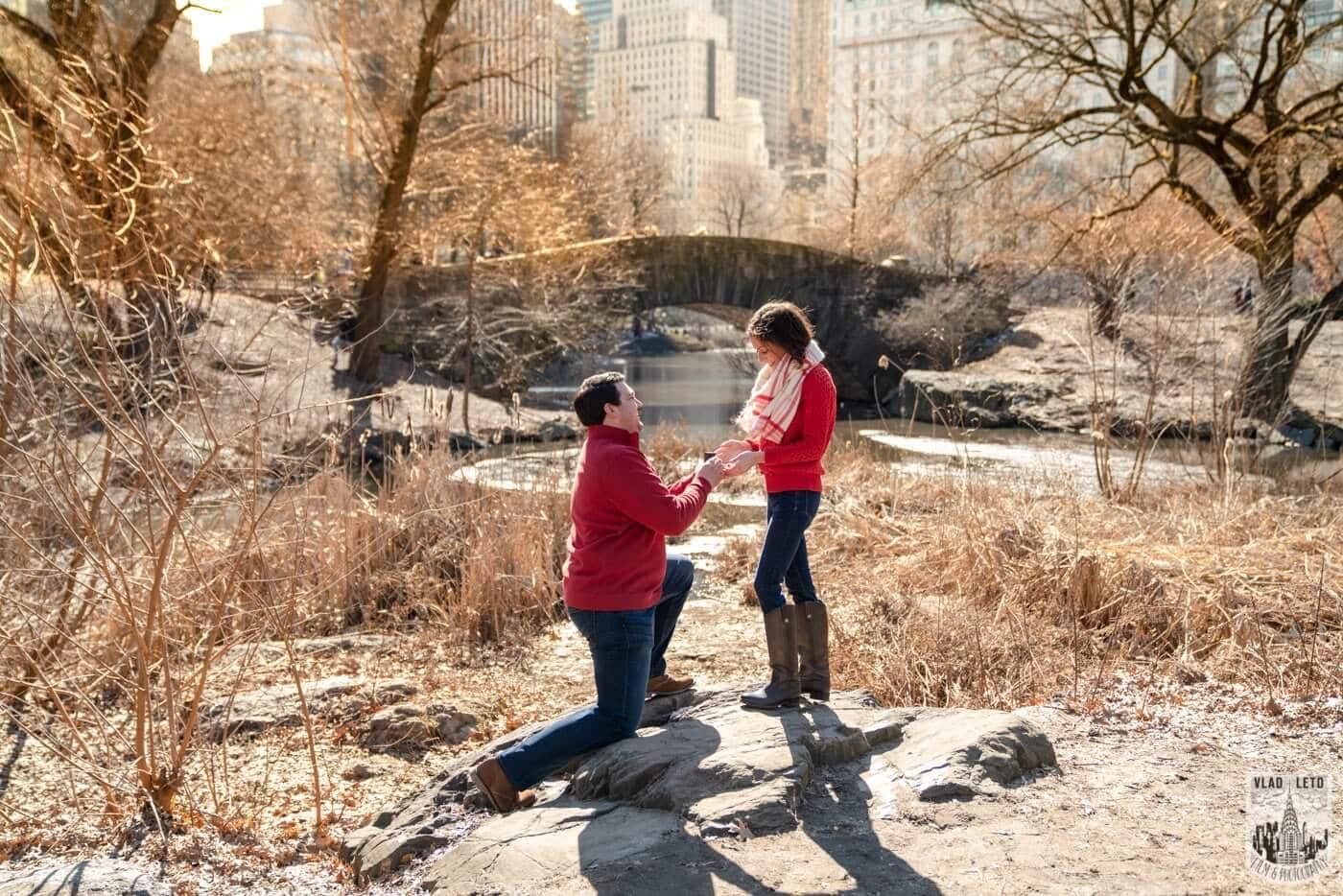 Photo 2 Gapstow bridge Marriage proposal in Central Park   VladLeto