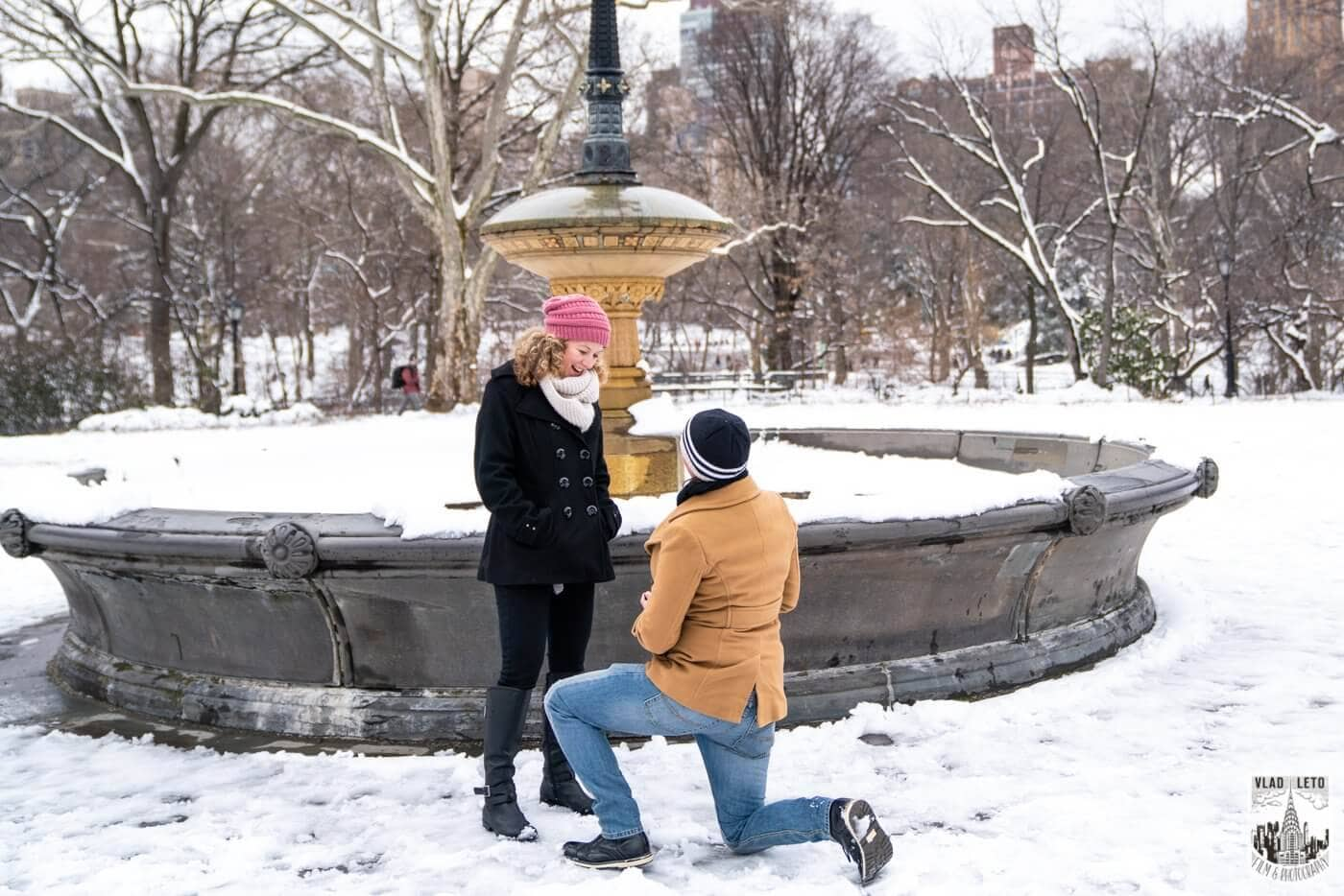 Photo Same sex couple proposal at Cherry Hill in Central Park   VladLeto