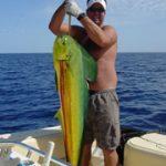 Bobby Mahi - Large Fish