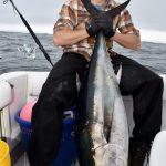 Bluefin Tuna - Medium Catch