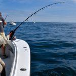 Two Fishing Boats Fishing for Tuna