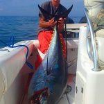 Medium Cape Cod Tuna