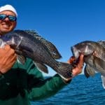 Cape Cod Black Sea Bass Fishing with Reel Deal