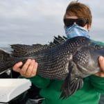 Cape Cod Deep Sea Fishing Charters