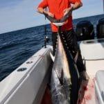 Cape Cod Bluefin Tuna Fishing Bobby Rice