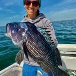 Cape Cod Light Tackle Black Sea Bass Fishing Charters