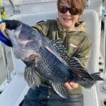 Cape Cod Black Sea Bass Fishing Charters