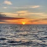 Cape Cod Sunrise Bobby Rice