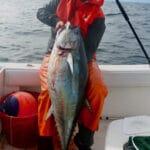 Cape Cod Bluefin Tuna Fishing Charters