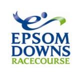 Epsom Downs logo - Storm DJs