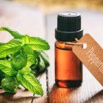 peppermint a potent antiviral herbal medicine