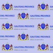 Gauteng Department of Health logo