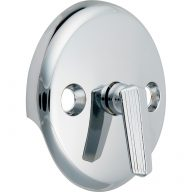 Trip lever waste overflow plate