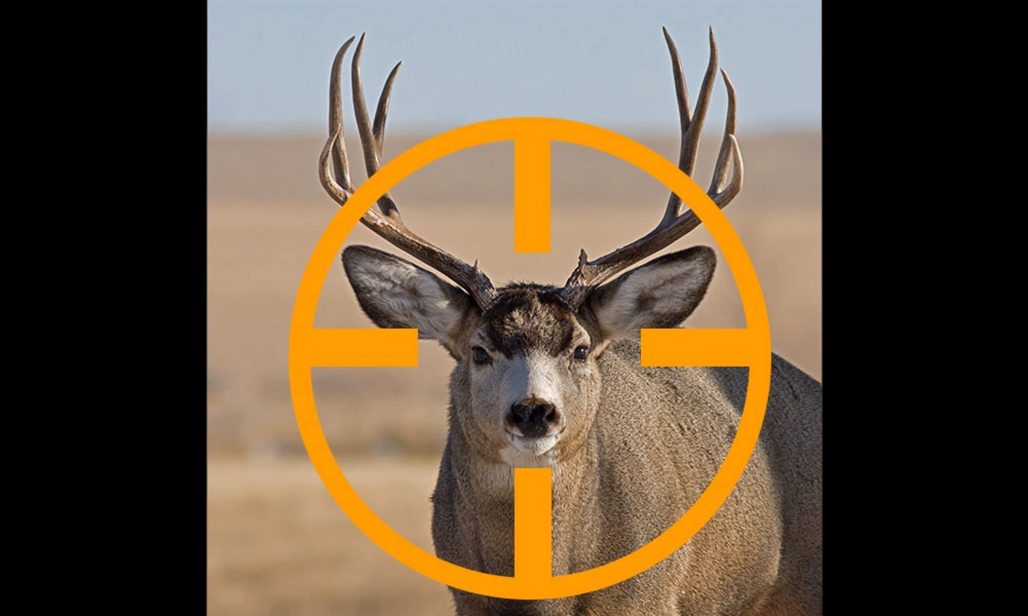Hunt Now Arizona