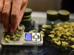 Challenges for Employers Related to Marijuana Use