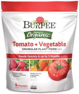 Burpee Natural And Organic Tomato
