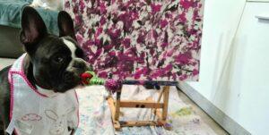 Cleo von Handicapdogs
