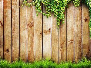 Der Holzzaun als stabiler Sichtschutz in Ihrem Garten- Erfahren Sie mehr bei Tipp-zum-Bau