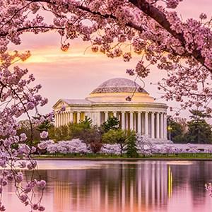 Washington D.C. Cherry Blossom Festival- Choir Concert Festival