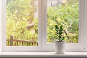 Tipp zum Bau zeigt Ihnen, wie Sie die automatische Gartenbewässerung auf Zimmerpflanzen übertragen.