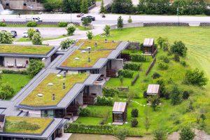 Erweitern Sie die Dachdämmung um eine leistungsstarke Dachbegrünung.