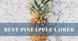 Best Pineapple Corer