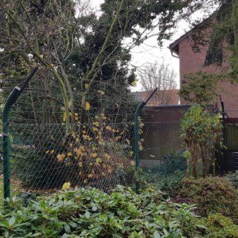 Katzenschutznetz im Garten