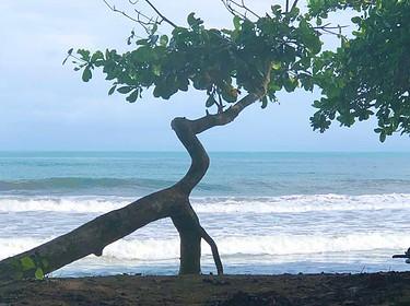 Maritimliebe Meerverliebt und Meergefühl