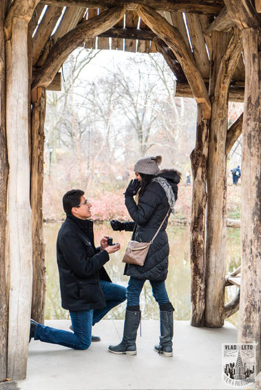 Photo Wagner Cove Surprise Proposal in Central Park | VladLeto