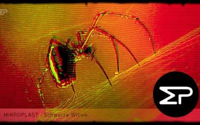 Spinnen auf YouTube