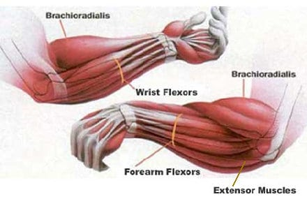 Grip Training