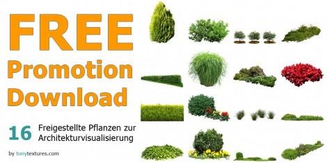 Free-Promo-Download-Freigestellte-Pflanzen