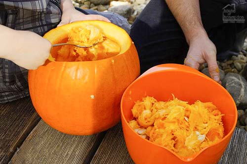 cleaning out pumpkin