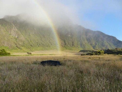 Hawaii Trekking Zelt