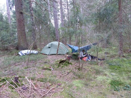 Wild Zelten Schwarzwald
